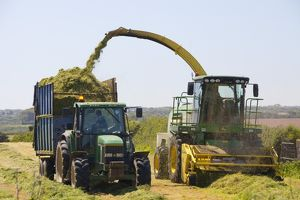 Harvesting grass for sileage in Cornwall, UK